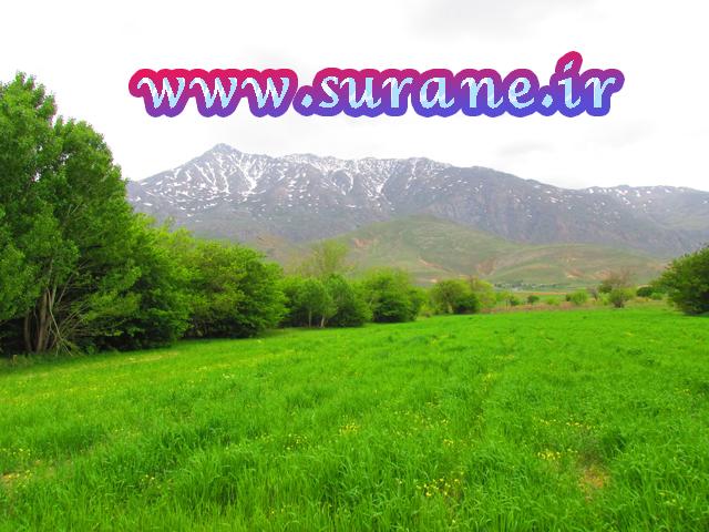 روستای سورانه
