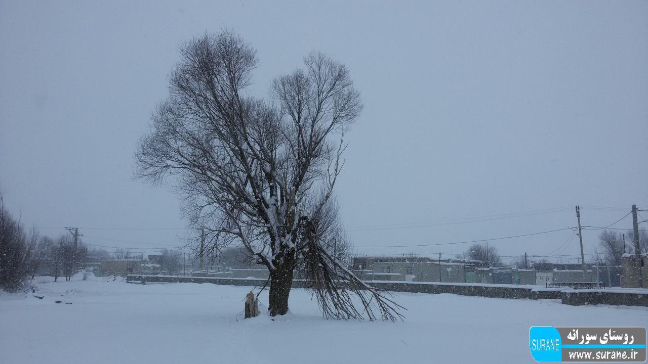 بارش برف پاییزی در روستای سورانه